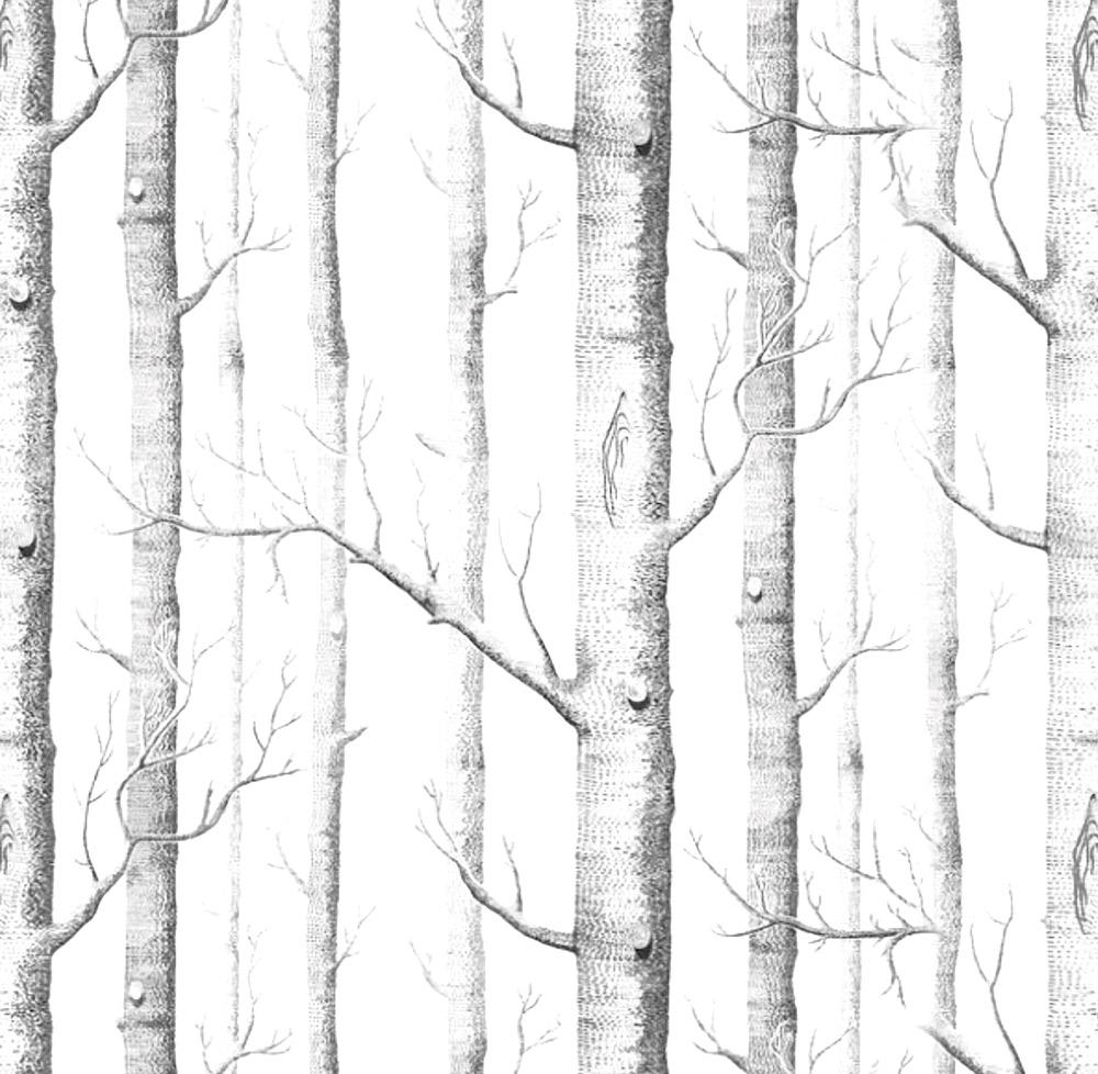Papel de Parede Casual Árvores Florestas
