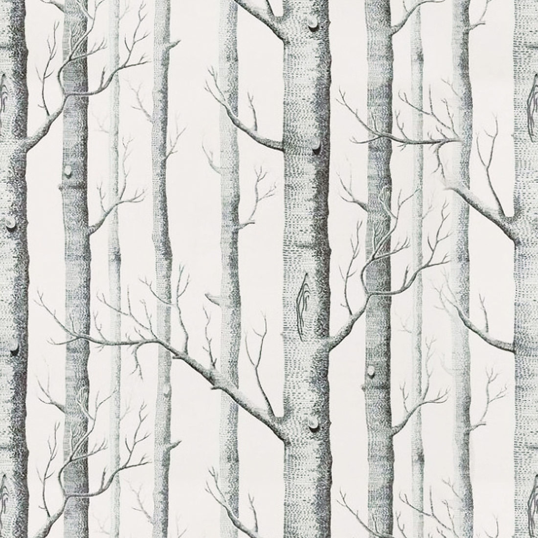 Papel de Parede Casual Árvores Secas