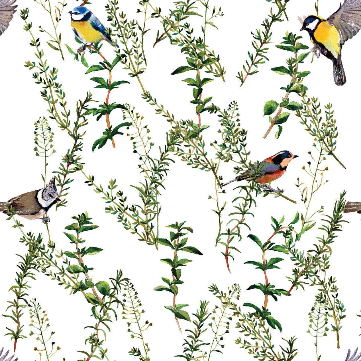 Papel de Parede Pássaros em Galhos Com Folhas