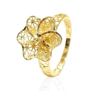 Anel Ouro 18k AN420