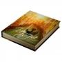 Caixa Livro Veneza