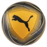 Bola Campo Puma Icon