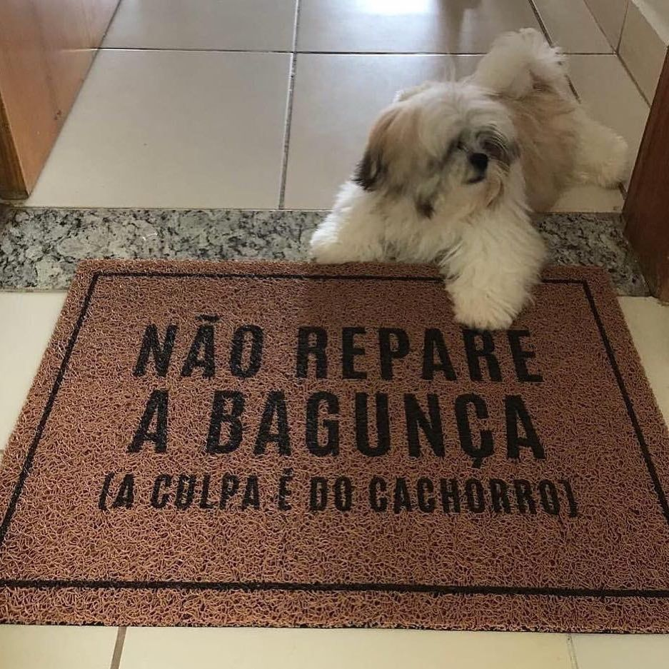 Tapete Capacho Pet 'A culpa é do cachorro'