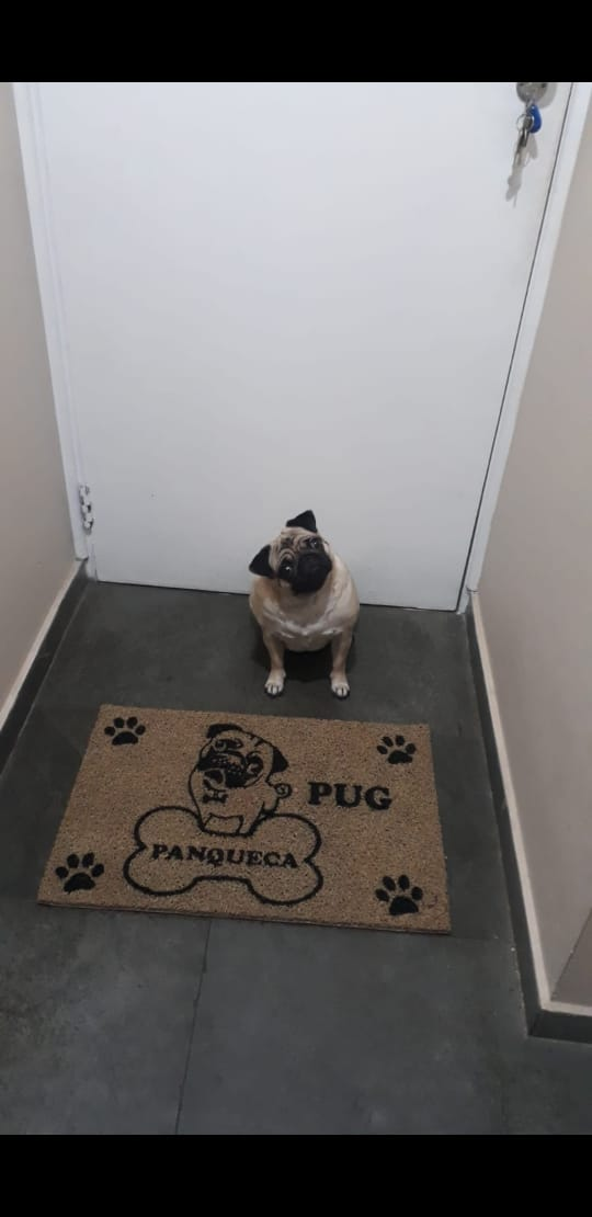 Tapete Capacho Pug