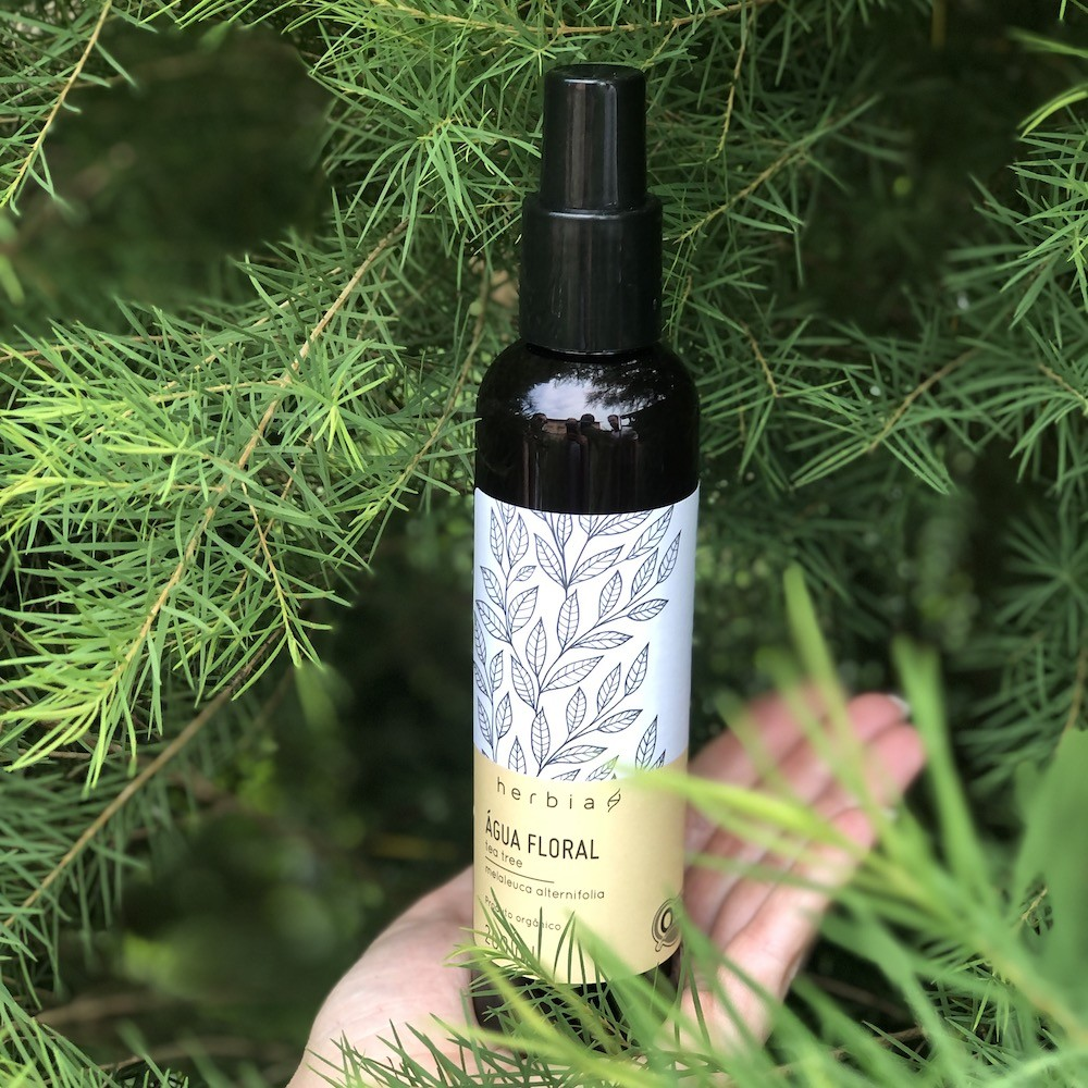Água Floral Orgânica de Tea tree (Melaleuca)