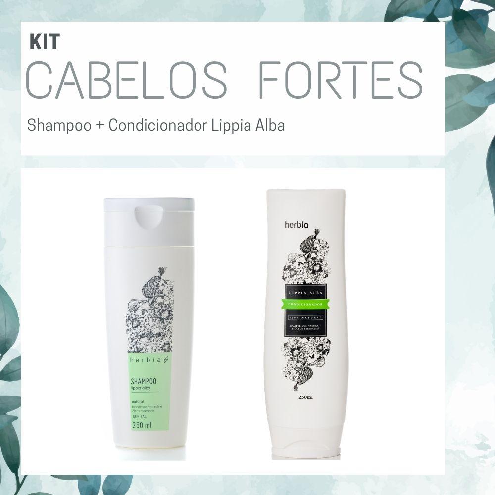 Kit Cabelos Fortes