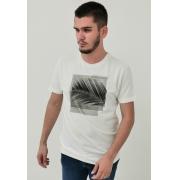 Camiseta Calvin Klein Off White Folha