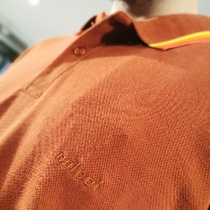 Camisa Gola Polo Colcci Terra Com Detalhe Na Gola