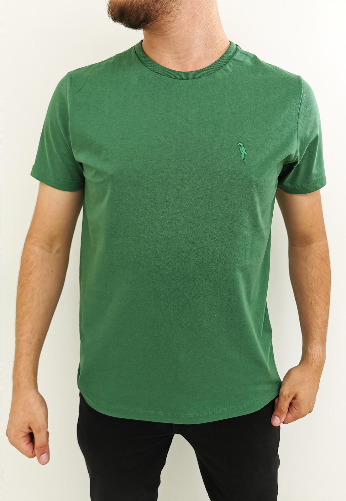 Camiseta Arandom Básica Verde
