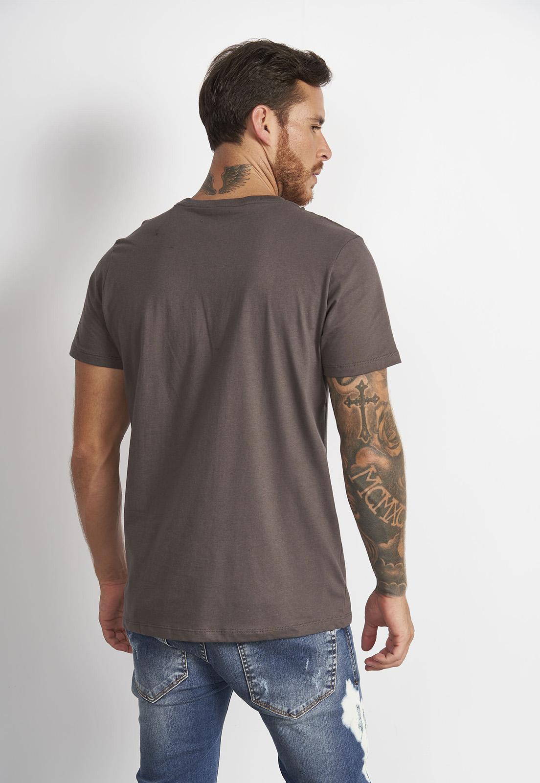 Camiseta Colcci Cinza Earth
