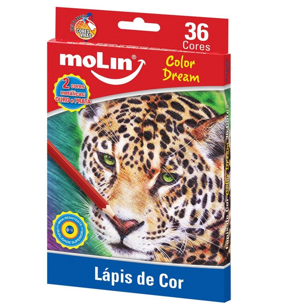 LÁPIS DE COR 36 CORES