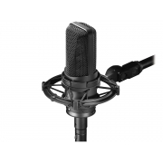 Audio Technica AT4050 Microfone Studio Profissional