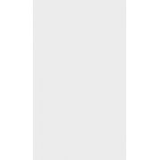 REVESTIMENTO 32x54cm 6029 cx2,40m² VIVA