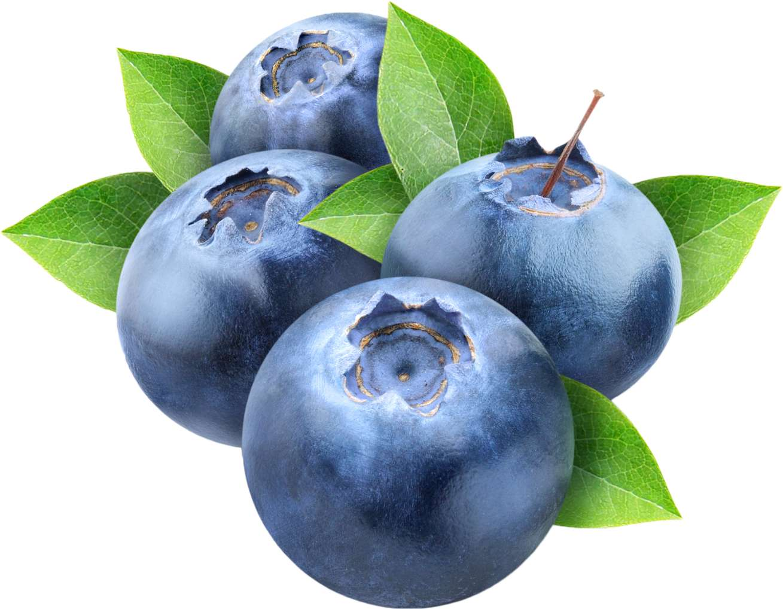 Blueberry Wild (TPA) - 10ml