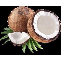 Coconut (TPA) - 10ml