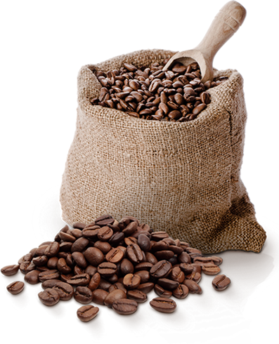 Coffee (TPA) - 10ml