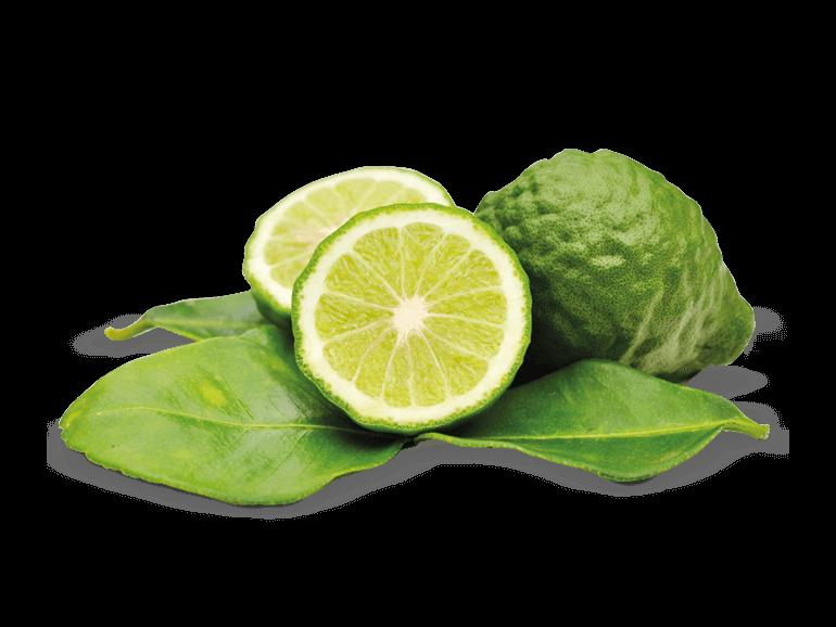 FlavourArt (FA) Bergamot 15ml