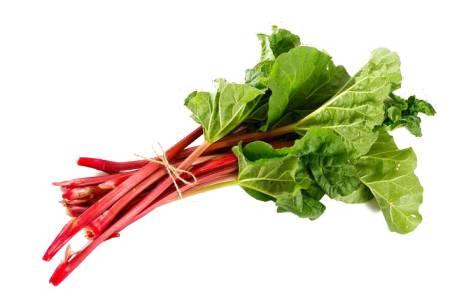 Rhubarb (CAP) - 15ml