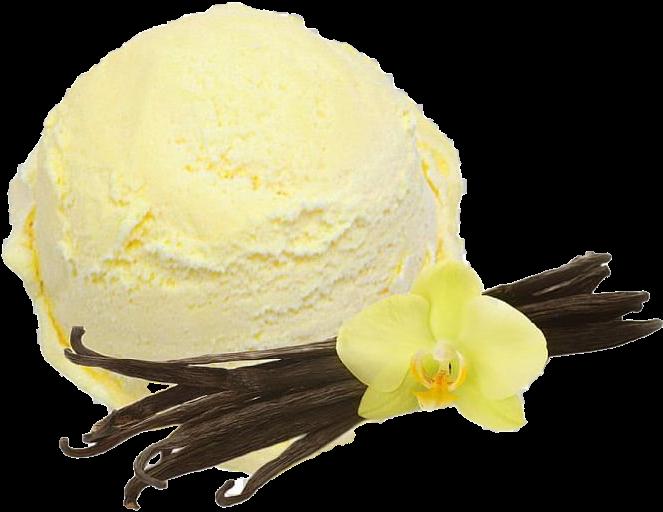 Vanilla Custard (TPA) - 10ml  - VM Labs