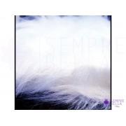 Tapete (Pelo) para fotos 20x30cm (Branco)