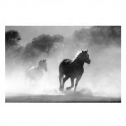 Quadro Cavalos