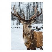 Quadro Cervo na Neve