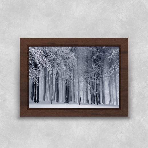 Quadro Árvore de Inverno - Moldura Tradicional com Vidro