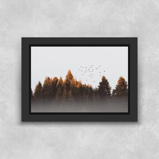 Quadro Árvores - Moldura Tradicional com Vidro