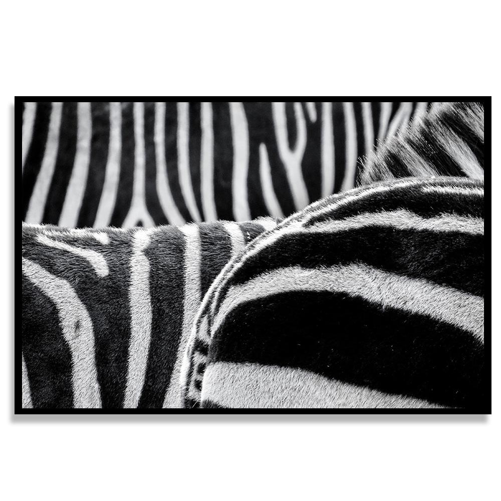 Quadro Listras de Zebras