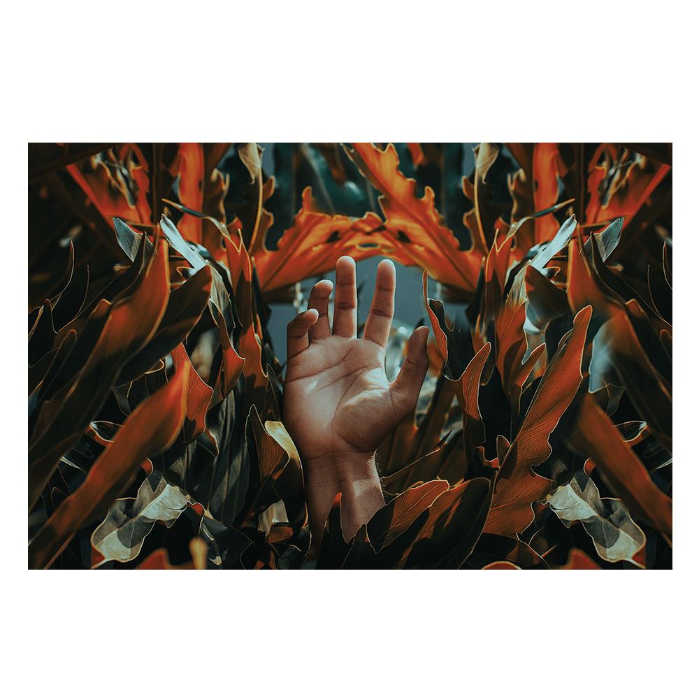 Quadro Mão e Flores