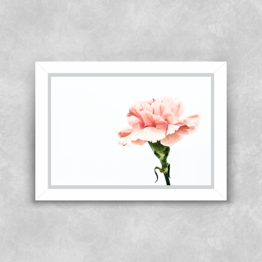 Quadro Rosa - Moldura Tradicional com Vidro