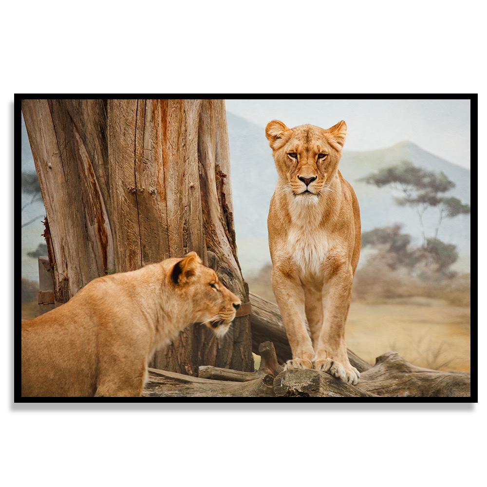 Quadro Tigres