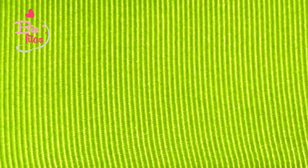 Fita Gorgurão Lisa Gitex Verde 118