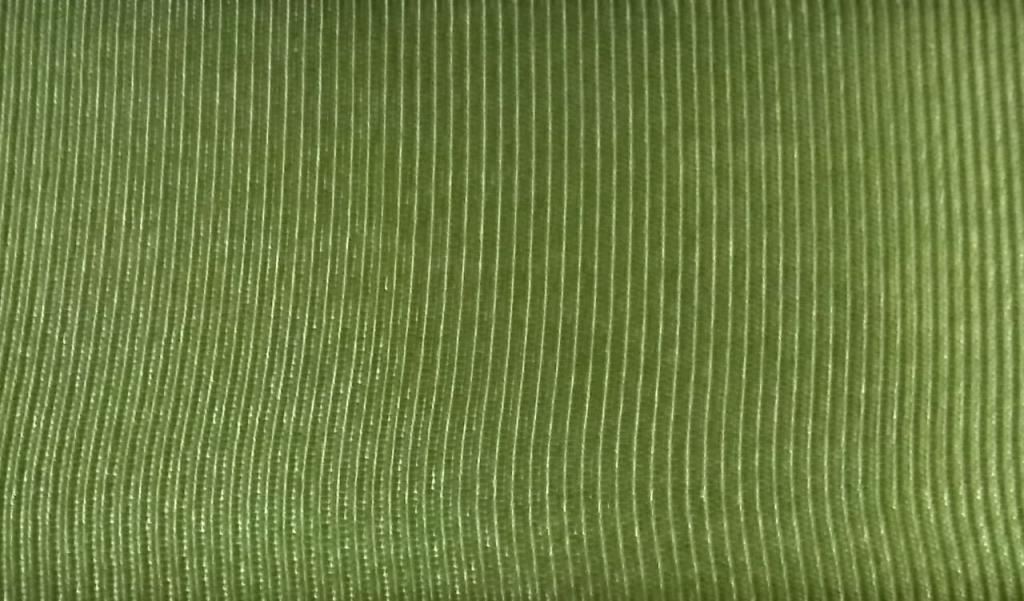 Fita Gorgurão Lisa Sinimbu Verde 1413