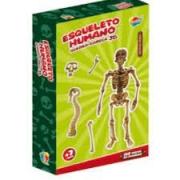 Quebra-Cabeça Esqueleto Humano 3D - AQUARELA