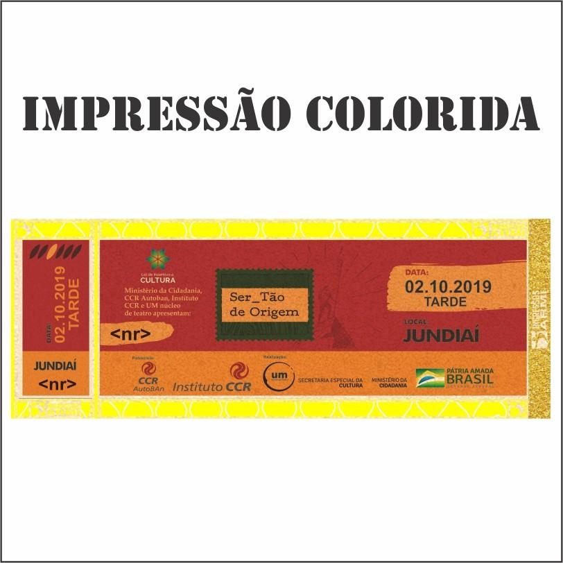 Ingresso Papel Moeda 16x6 - Impressão Colorida