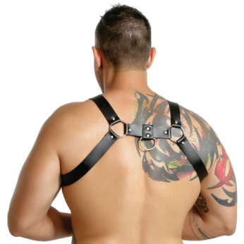 Harness Aquiles