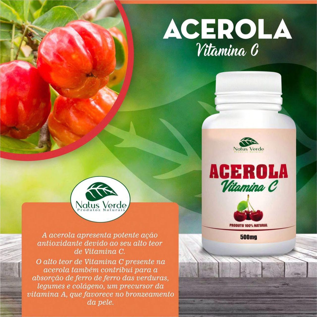 Complemento Alimentício Acerola 60 Caps Natus Verdes  - Fribasex - Fabricasex.com