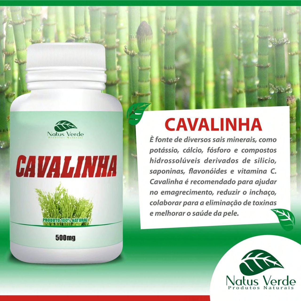 Composto natural Cavalinha 60 Cap Natus Verde  - Fribasex - Fabricasex.com