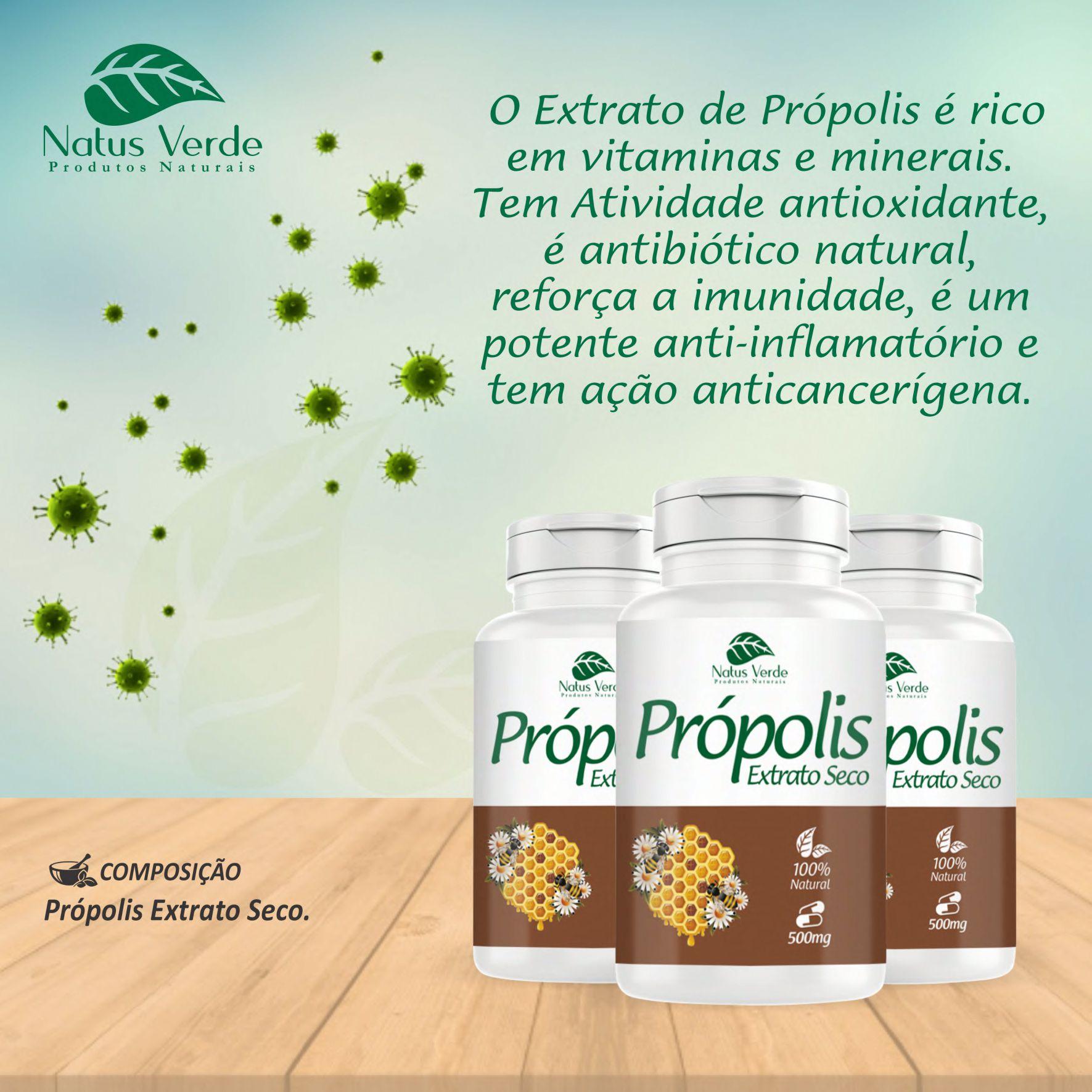 Composto Própolis Extrato Seco 60 Caps Natus Verde   - Fribasex - Fabricasex.com