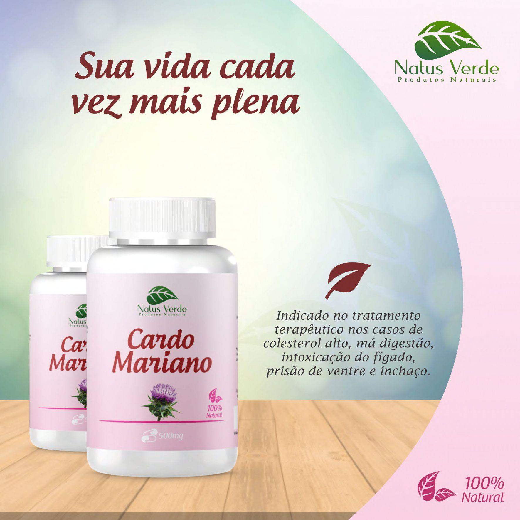 Produto Natural Cardo Mariano Natus Verde 60 caps  - Fribasex - Fabricasex.com