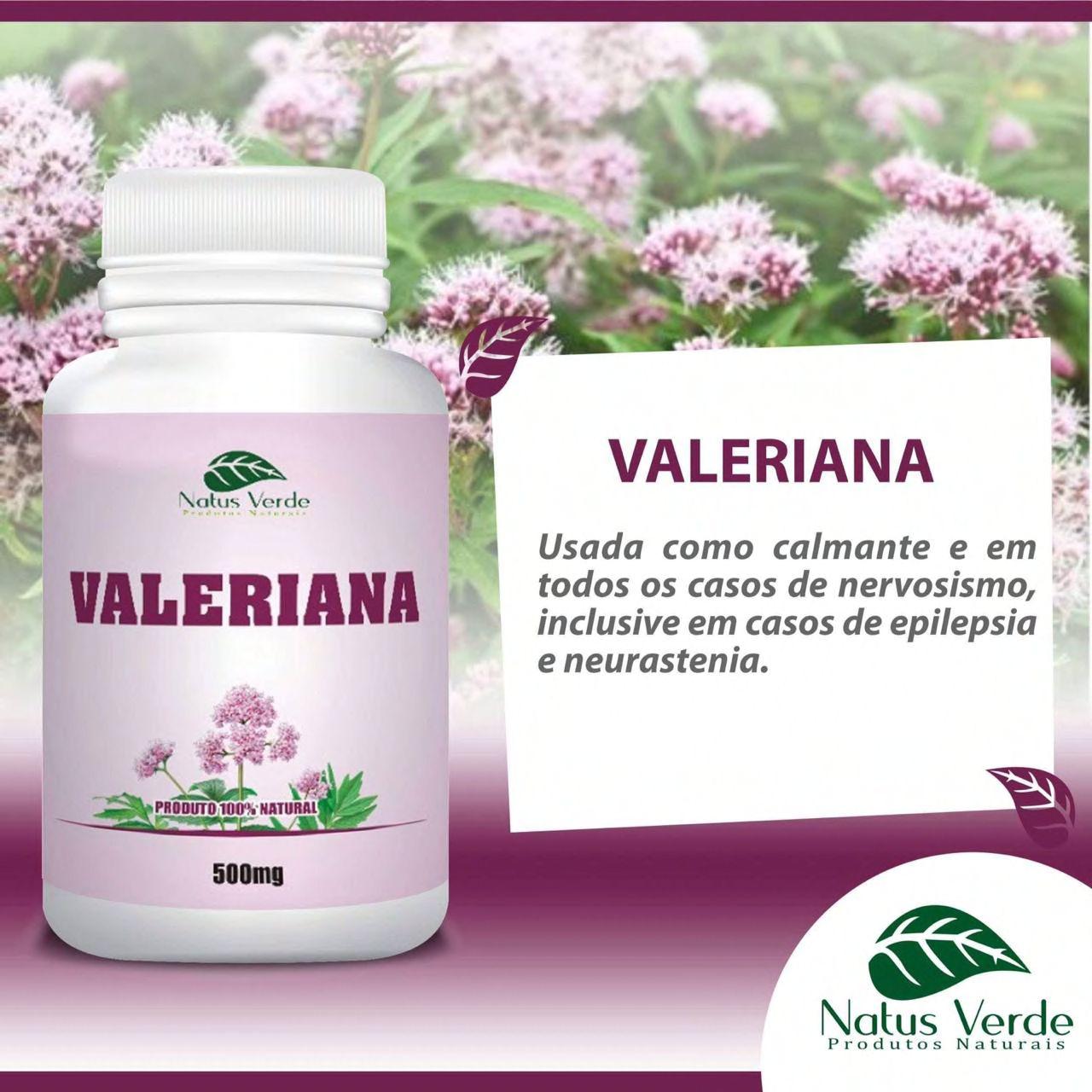 Produto Natural Valeriana 500mg 60Caps Natus Verde  - Fribasex - Fabricasex.com