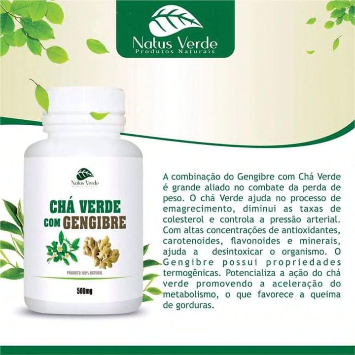 Produtos Naturais Cha Verde C/Gengibre 60 Caps Natus Verdes  - Fribasex - Fabricasex.com