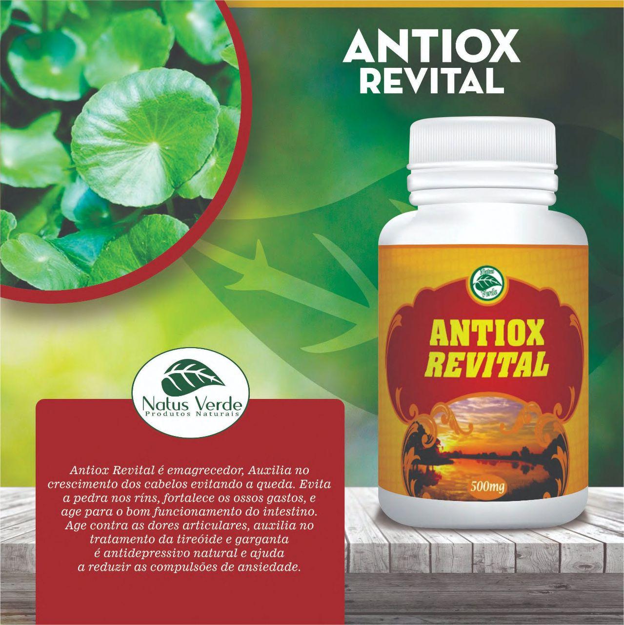 Produtos Naturais Antiox Revita Emagrecedor Natus Verde 60 caps  - Fribasex - Fabricasex.com
