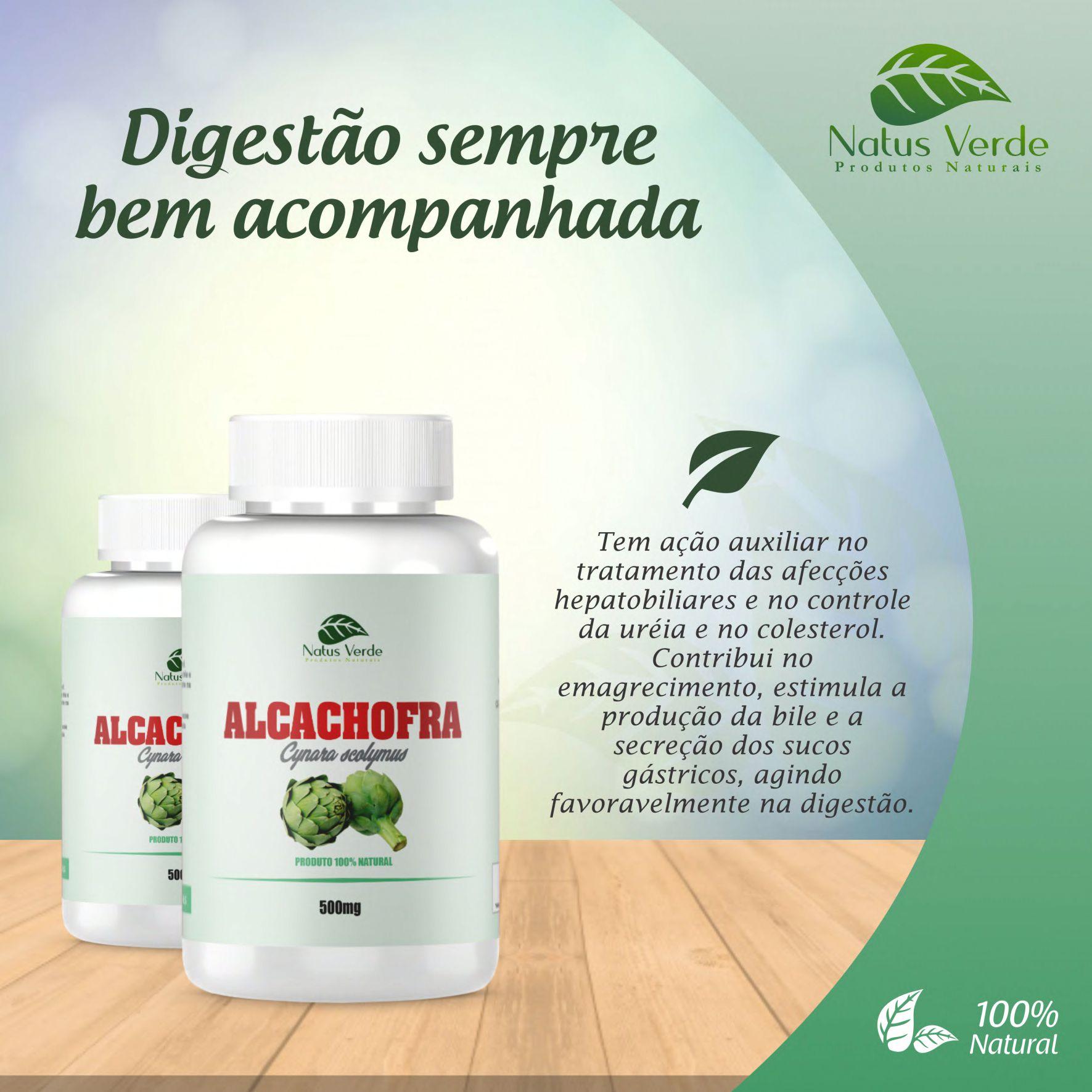 Suplemento Alimentício Alcachofra 60 Caps Natus Verde  - Fribasex - Fabricasex.com