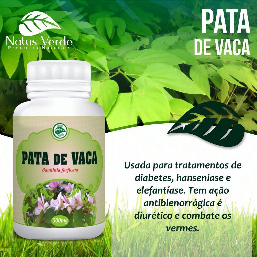 Suplemento Pata de Vaca 60 Caps Natus Verde  - Fribasex - Fabricasex.com