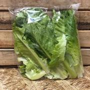 Alface Romana Higienizada Agroecológica