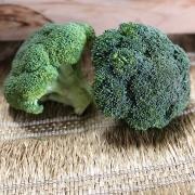 Brócolis Ninja Orgânico