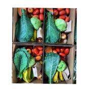 Cesta Frutas (imagem ilustrativa)