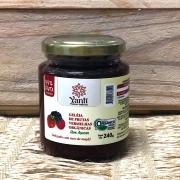 Geleia de Frutas Vermelhas sem Açúcar Orgânica 240g - Yanti